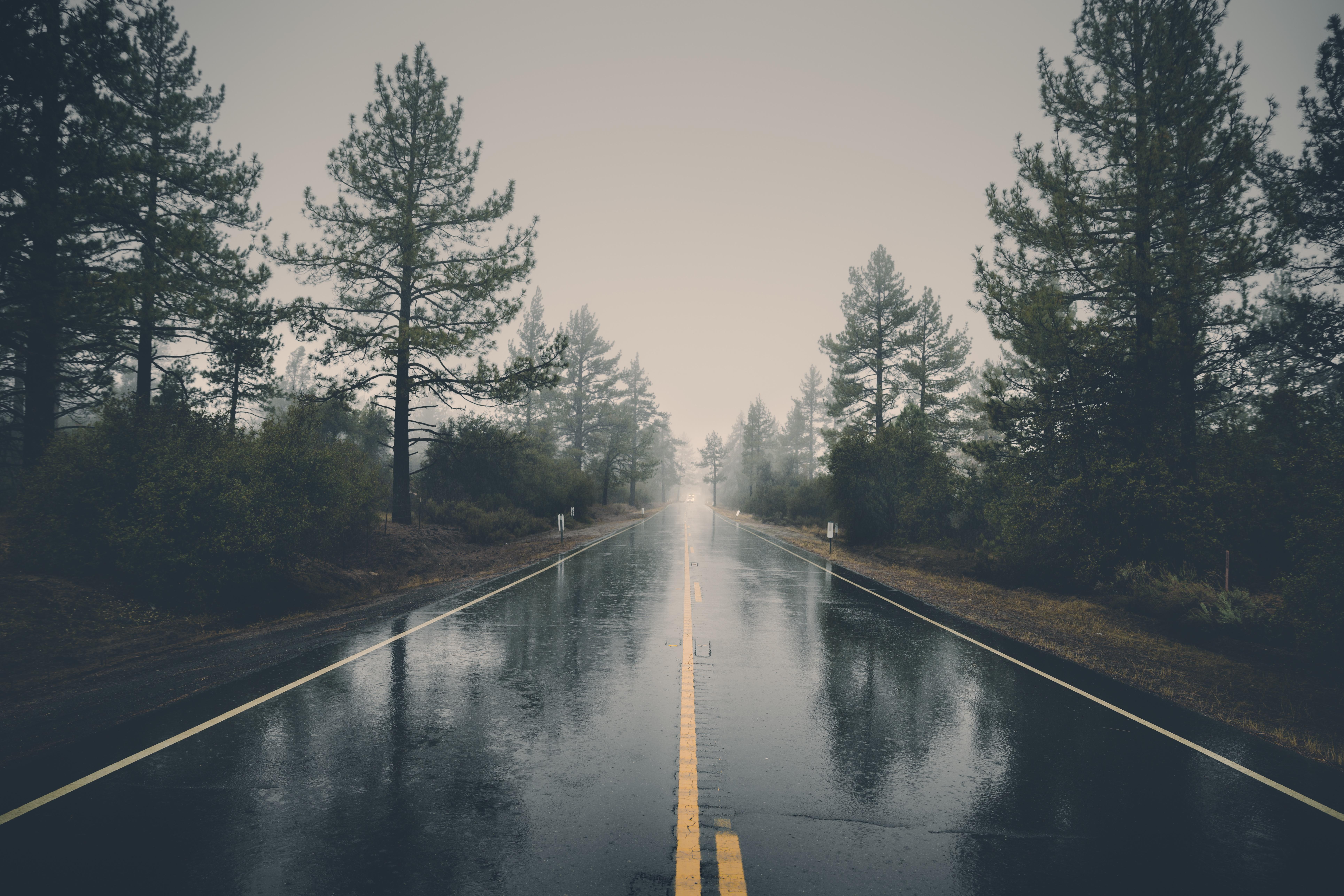 wet_road.jpg